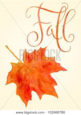 Watercolor Maple Leaf And Fall Word