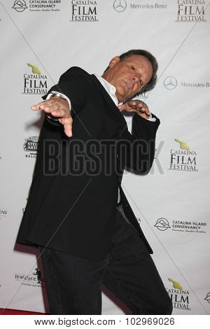 LOS ANGELES - SEP 25:  Chris Mulkey at the Catalina Film Festival Friday Evening Gala at the Avalon Theater on September 25, 2015 in Avalon, CA