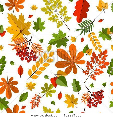 Seamless Pattern With Colorful Autumn Leaves. Vector Illustration.