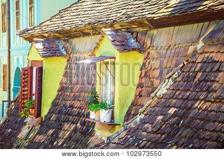 Mansard Windows