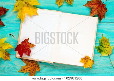 Autumn Leaves And Old Book