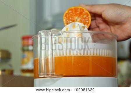 Orange Fruit Squeezed With Woman Hand In Juicer Machine, Orange Juice
