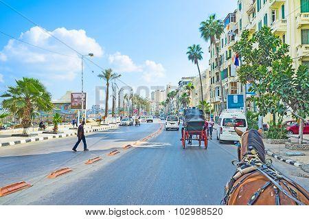 The Mediterranean Promenade