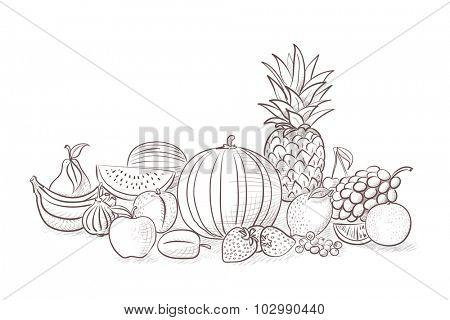 Different kind of fruits - still life illustration