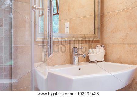 Elegant Washbasin And Shower
