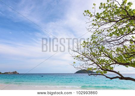 Sea and beach of Similan island in Thailand
