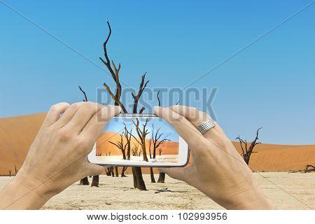Dead Vlei Smartphone Photo