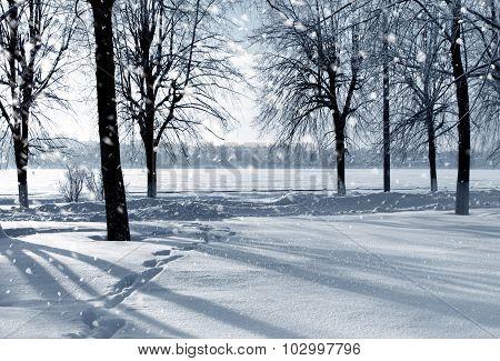Winter snowstorm