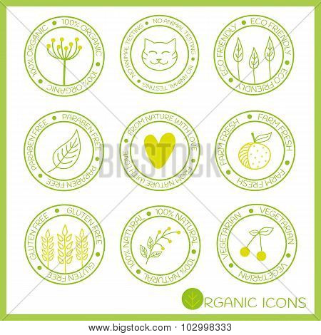 Organic Icons In Doodle Style.