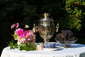 Постер, плакат: Samovar Cups Of Tea Pink Flowers And Grapes On A Table Covered With A White Cloth The Table Is In