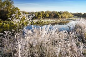 pic of novosibirsk  - The first frost - JPG