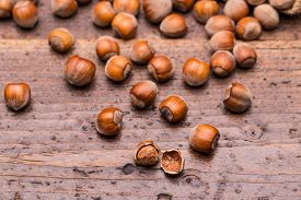 picture of filbert  - Hazelnuts filbert on vintage wooden background, studio shot