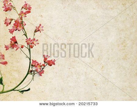light brown background image with interesting texture, red floral elements and plenty of space for text