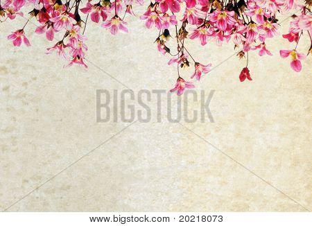 schöne weiße Hintergrundbild mit interessanten erdig Textur, florale Elemente und viel Platz f