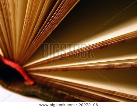 Open book, blank pages, close-up