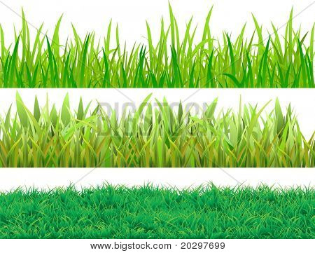 Set grass. Three samples for different uses. Vector image.