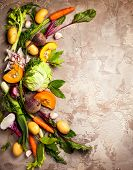 Variety of fresh raw vegetable ingredients for cooking of vegetable soup or stew. Autumn vegetable s poster