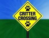 Critter Crossing Graphic Street Sign poster