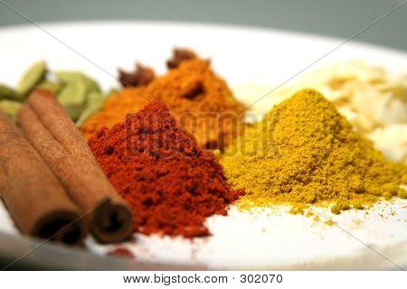 Closeup Spices