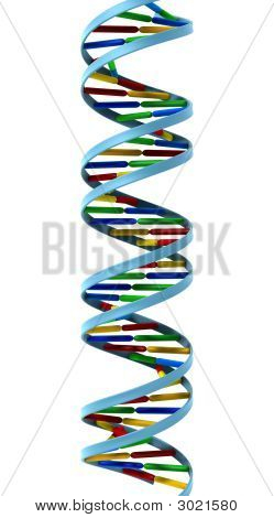 Dna Helix Isolated