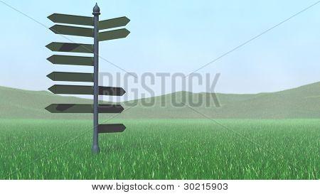 Richtung Zeiger auf Rasen