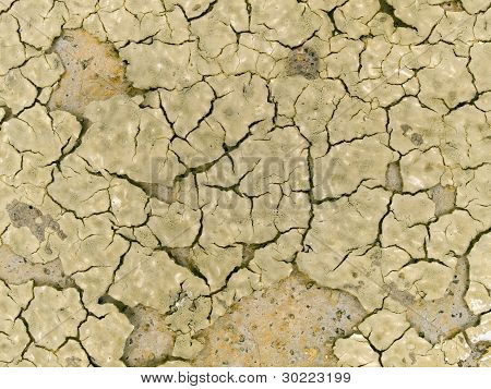Macro Texture - Earth - Dry And Cracked