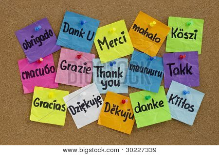 Thank you in sixteen languages - colorful sticky notes with handwriting on cork bulletin board