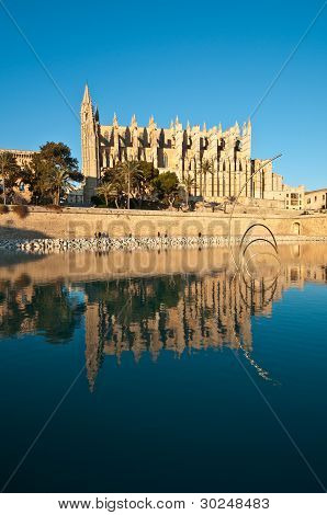 Cathedral Of Palma