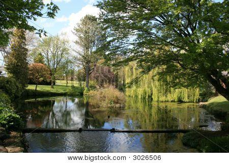Scenic Pond