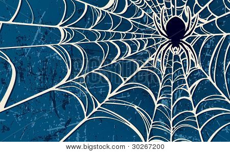 Spider Web Blue Background