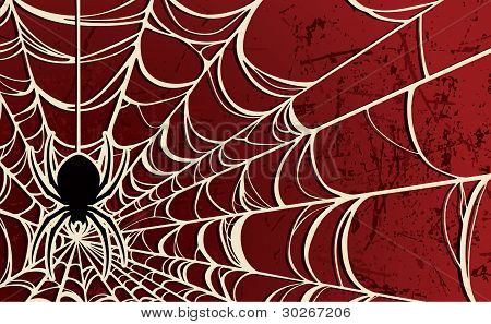 Spider Web Red Background
