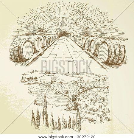 Bodega, viñedo - sistema de mano alzada