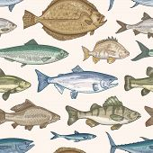 Elegant Seamless Pattern With Different Types Of Fish On Light Background. Backdrop With Marine Or F poster