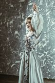 A portrait of a mysterious lady in a fluffy silver dress with flowers posing indoor. Fairy tale, fas poster