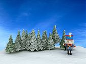 foto of tchaikovsky  - Nutcracker in the forest   - JPG