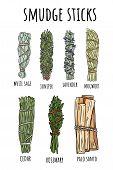 Sage Smudge Sticks Hand-drawn Set Of Doodles. Herb Bundles poster