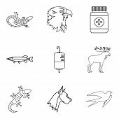Professional Vet Icons Set. Outline Set Of 9 Professional Vet Icons For Web Isolated On White Backgr poster