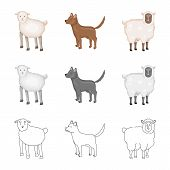 Vector Illustration Of Breeding And Kitchen  Logo. Collection Of Breeding And Organic  Stock Vector  poster
