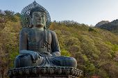 Image Of The Buddha Statue Of Sinheungsa Temple, In Seoraksan, South Korea poster