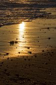 Beach Vacation. Romantic Evening Sunlight Reflecting Off Sand. Dawn Or Dusk Twilight On A Tropical I poster
