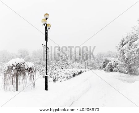 Snow-covered Lights