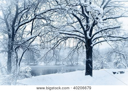 Snow-covered River