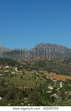 Rural landscape, Andalusia, Spain.