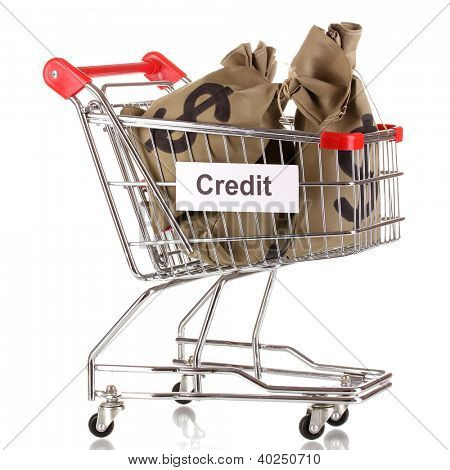 Bags with money in trolley isolated on white