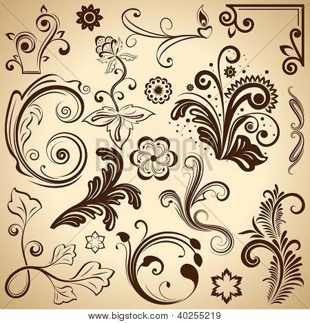 Set of floral vintage vector design elements.