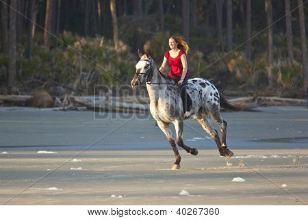 woman riding horse bareback on the beach