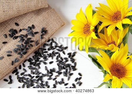 sunflower seed on wood table white