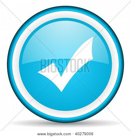 accept blue glossy icon on white background