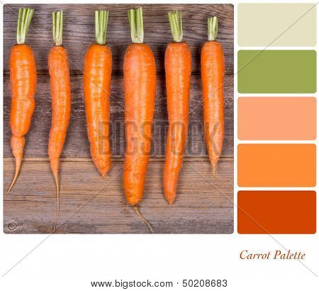 A row of fresh carrots on wooden background, in a colour palette with complimentary colour swatches