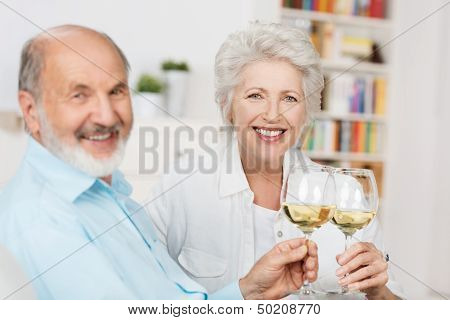 Happy Senior Couple Toasting Each Other